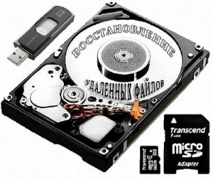 Raise Data Recovery for FAT/NTFS 5.11.1 (2013)